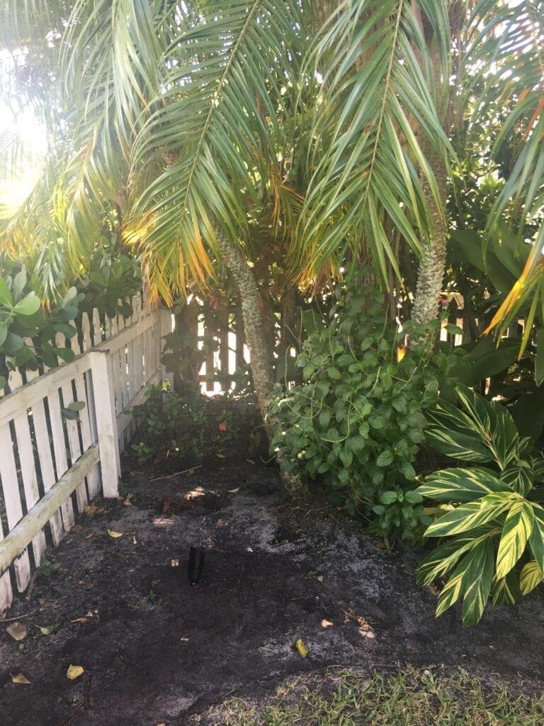Landscape Lighting West Palm Beach