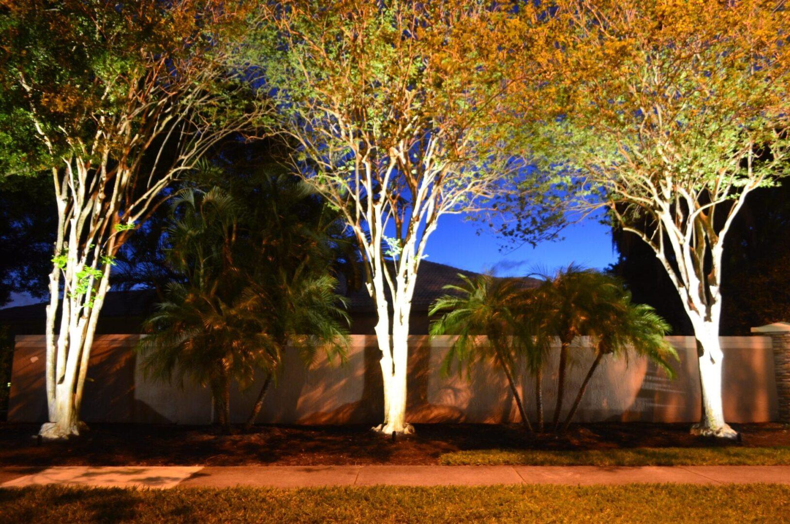 Residential Landscpae Lighting LED Lights