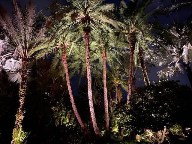 Residential LED Landscape Lighting-Boca Raton