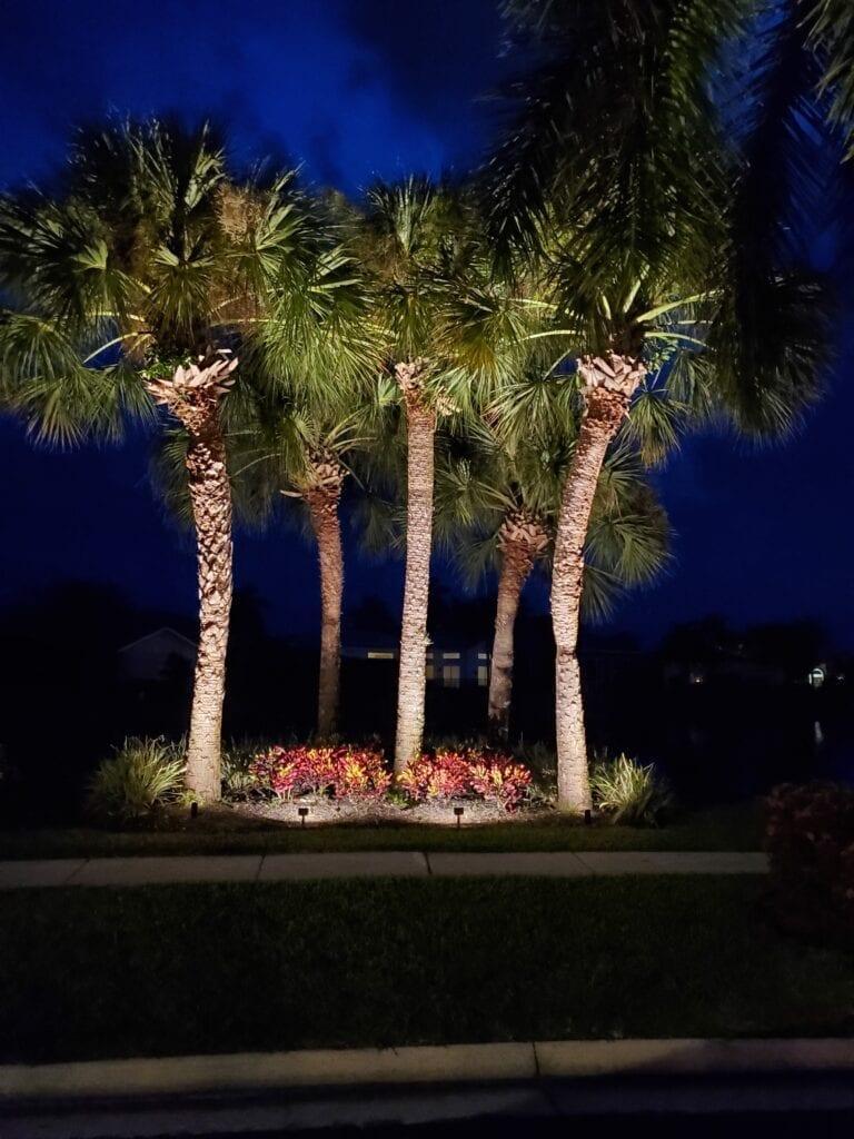 Landscape Lighting-Wellington-Illumination FL