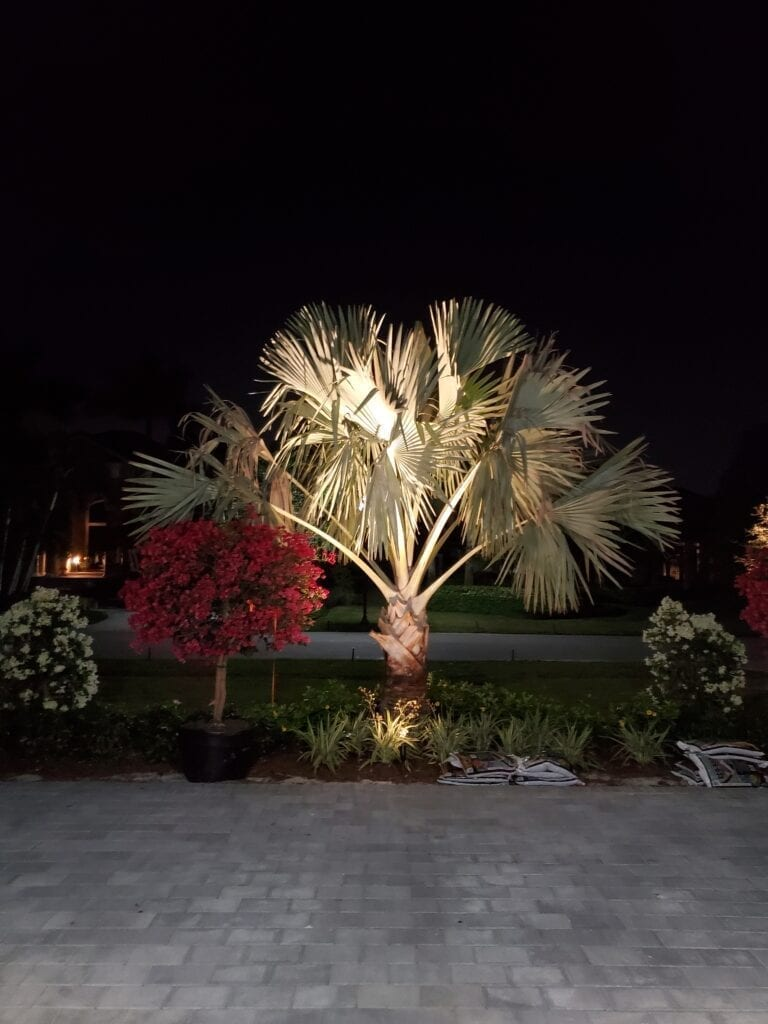 Landscape Lighting-Palm Beach Gardens-Illumination FL