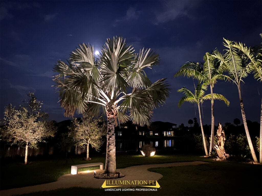 Illumination-FL-Landscape-Lighting-Garden-Seating-Park