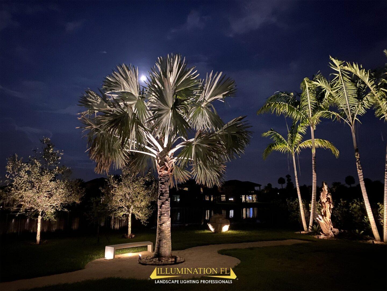 Illumination-FL-Landscape-Lighting-Garden-Seating-Park