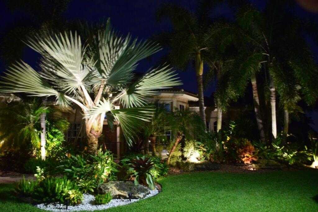 Residential Landscape Lighting- Illumination FL- Path Lights and Trees