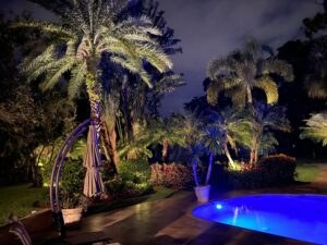 Residential Landscape Lighting - Illumination FL- Palm Trees and Pool